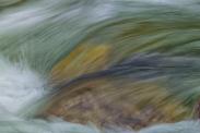 Mountain Stream - ©Derek Chambers