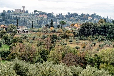 Torre del Gallo and Tuscan Countryside - Outskirts of Florence - Pitti